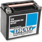 12V Maintenance Free Battery